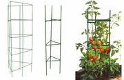 Triangular Tomato Cages - Great Support for Tomatoes and Peppers